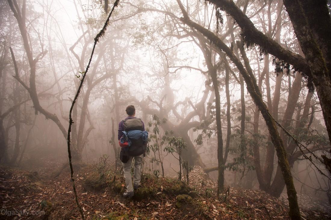 Марди Химал треккинг в Непале (7)