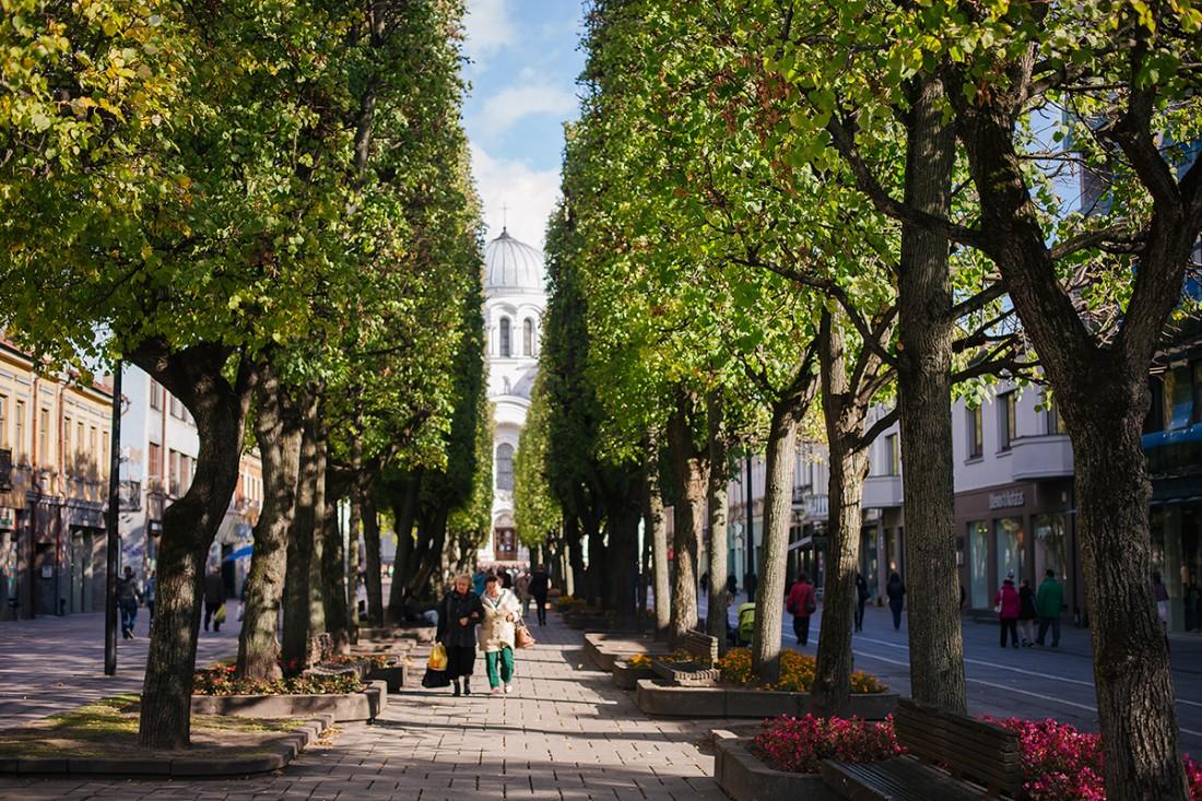 Прогулки по Вильнюсу