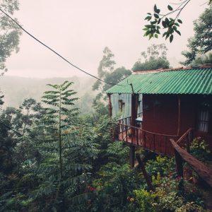 Где остановиться в Элле, Шри-Ланка