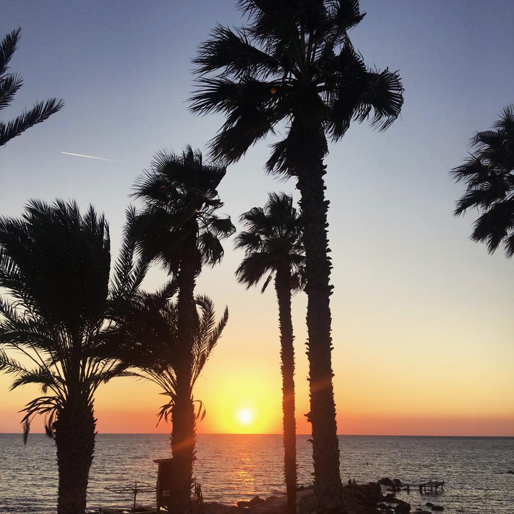 Жизнь на Кипре (15)