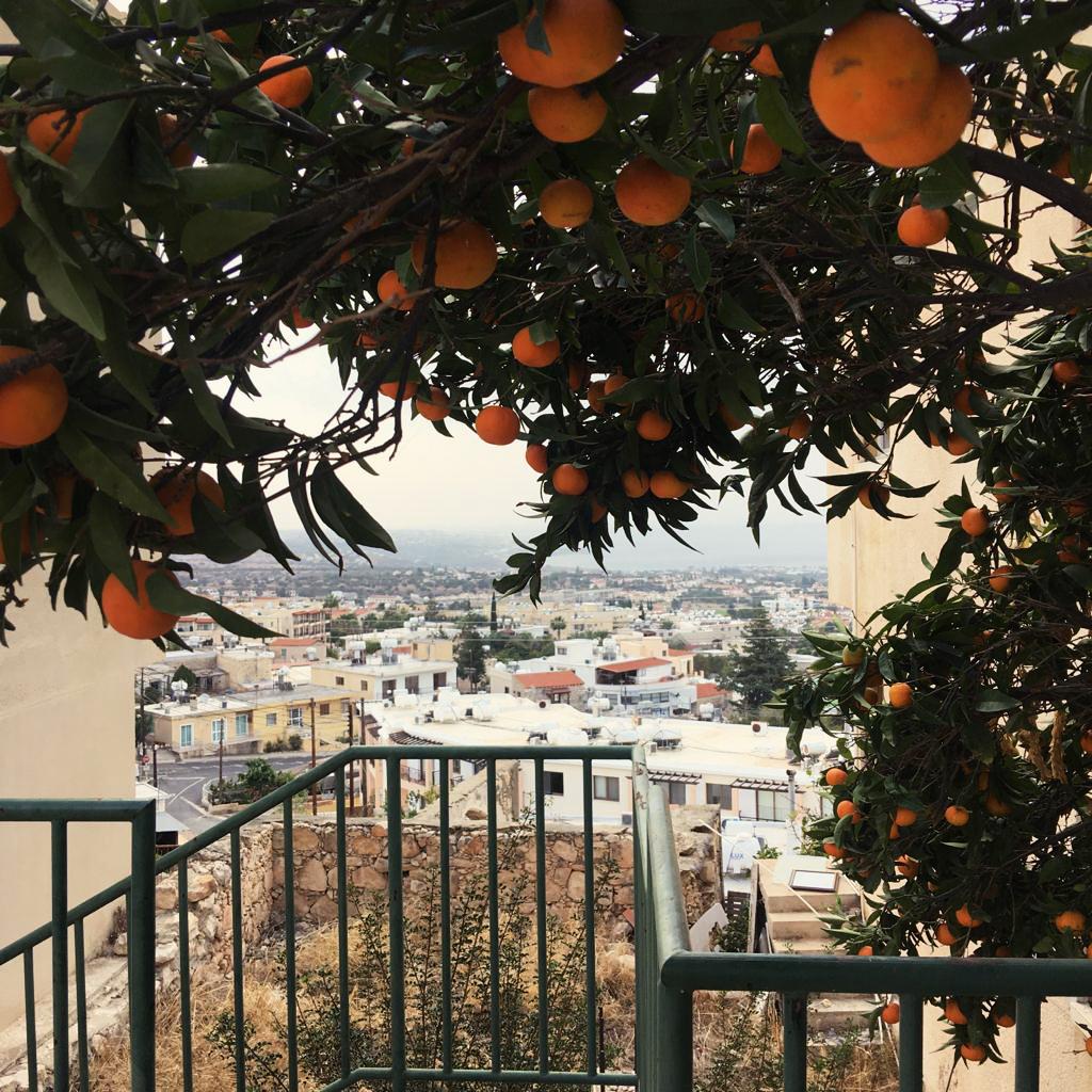 Жизнь на Кипре (12)