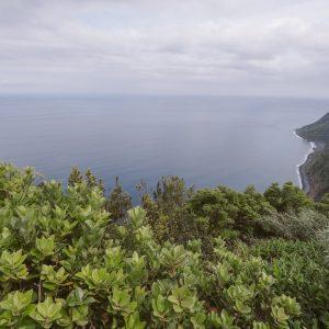 Азорские острова, Португалия (31)