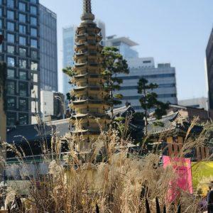 Путешествие в Сеул. Что посмотреть (117)