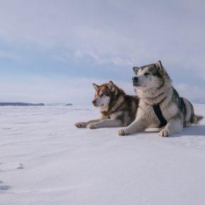 Путешествие по льду Байкала пешком самостоятельно (71)