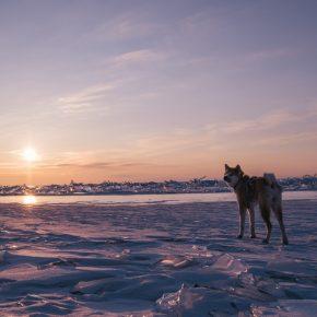 Путешествие по льду Байкала пешком самостоятельно (23)